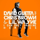 I Can Only Imagine (feat. Chris Brown and Lil Wayne)/David Guetta