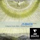 Bach : Masses BWV 233-235, Sanctus BWV 238/Philippe Herreweghe
