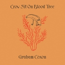Crow Sit On Blood Tree/Graham Coxon