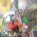 Flowers/Joan Of Arc