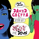 Shot Me Down (feat. Skylar Grey)/David Guetta
