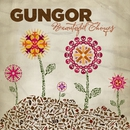 Beautiful Things/Gungor