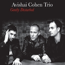 Gently Disturbed/Avishai Cohen Trio