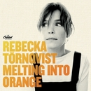 Melting Into Orange/Rebecka Törnqvist