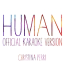 human (Official Karaoke Version)/christina perri