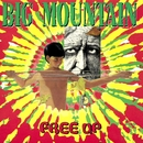 Free Up/Big Mountain