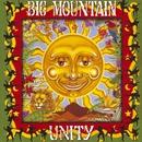 Unity/BIG MOUNTAIN