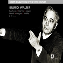 Bruno Walter :Great Conductors of the 20th Century/Bruno Walter