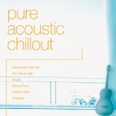 Pure Acoustic Chillout/The New World Orchestra With Merv Young