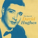 The Best Of David Hughes/David Hughes