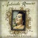 Grandes Exitos/Antonita Romero
