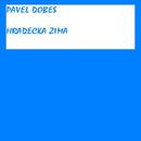 Hradecka zima/Pavel Dobes
