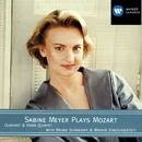 Mozart: Clarinet Quintet in A K.581 & Horn Quintet in E flat K.407 [386c]/Sabine Meyer/Bruno Schneider/Wiener Streichsextett