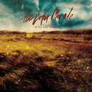 Strange Comfort/The Color Morale