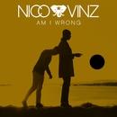Am I Wrong/Nico & Vinz