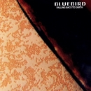 Falling Back to Earth/Bluebird
