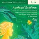 Awakened Rainforest/Dr. Jeffrey Thompson