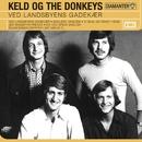 Ved Landsbyens Gadekær/The Donkeys