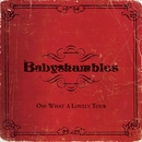 Oh! What a Lovely Tour (Live at The S.E.C.C.)/Babyshambles