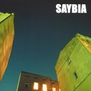 The Second You Sleep/Saybia