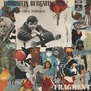 Fragment/Thorstein Bergman
