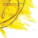 The Colossal Gray Sunshine/Faultline