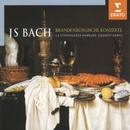 Bach: Brandenburg Concertos Nos.1-6 BWV 1046-51, Concerto BWV 1050a & Triple Concerto BWV 1044/La Stravaganza (Hamburg)/Siegbert Rampe