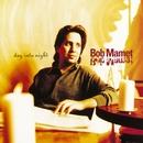 Day Into Night/Bob Mamet