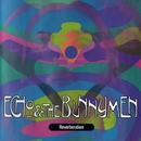 Reverberation/Echo And The Bunnymen