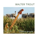 Common Ground/Walter Trout