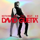 Play Hard (feat. Ne-Yo & Akon)/David Guetta