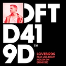 Holdin On (feat. Lisa Shaw) [Remixes]/Lovebirds