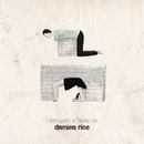 I Don't Want To Change You/Damien Rice