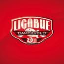 Campovolo 2.011/Ligabue