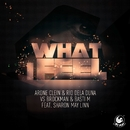 What I Feel (feat. Sharon May Linn)/Arone Clein & Rio Dela Duna vs. Brockman & Basti M
