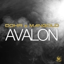 Avalon/Dohr & Mangold