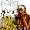 What's the Point (feat. Nuwella)/Avi Elman & Danny J