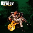 Lady's Bridge/Richard Hawley
