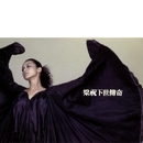 Liang Zhu Xia Shi Chuan Qi (2nd Version)/HOCC