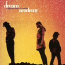 A Different Kind of Weather/The Dream Academy