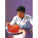 ru guo you yi tian/Andy Lau