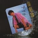 Meng Long Ye Yu Li (Hua Xing 40 Fu Ke Ji Lie)/Tony Leung