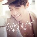Hardly Necessary to Say/Ahn Jae Wook