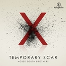 Temporary Scar/House South Brothers