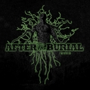 Rareform [Re-Issue]/After The Burial