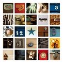 Amaral 1998 - 2008 [Remastered] (Remastered)/Amaral