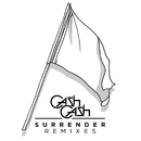 Surrender Remixes/Cash Cash