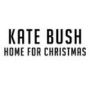 Home for Christmas/Kate Bush