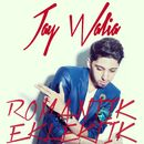 Romantik Eklektik/Jay Walia