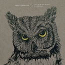 More Heart, Less Attack (Live From The Woods)/NEEDTOBREATHE